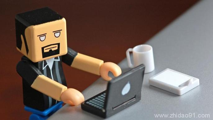 web 开发人员